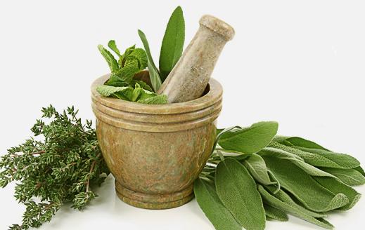 liecba-homeopatie